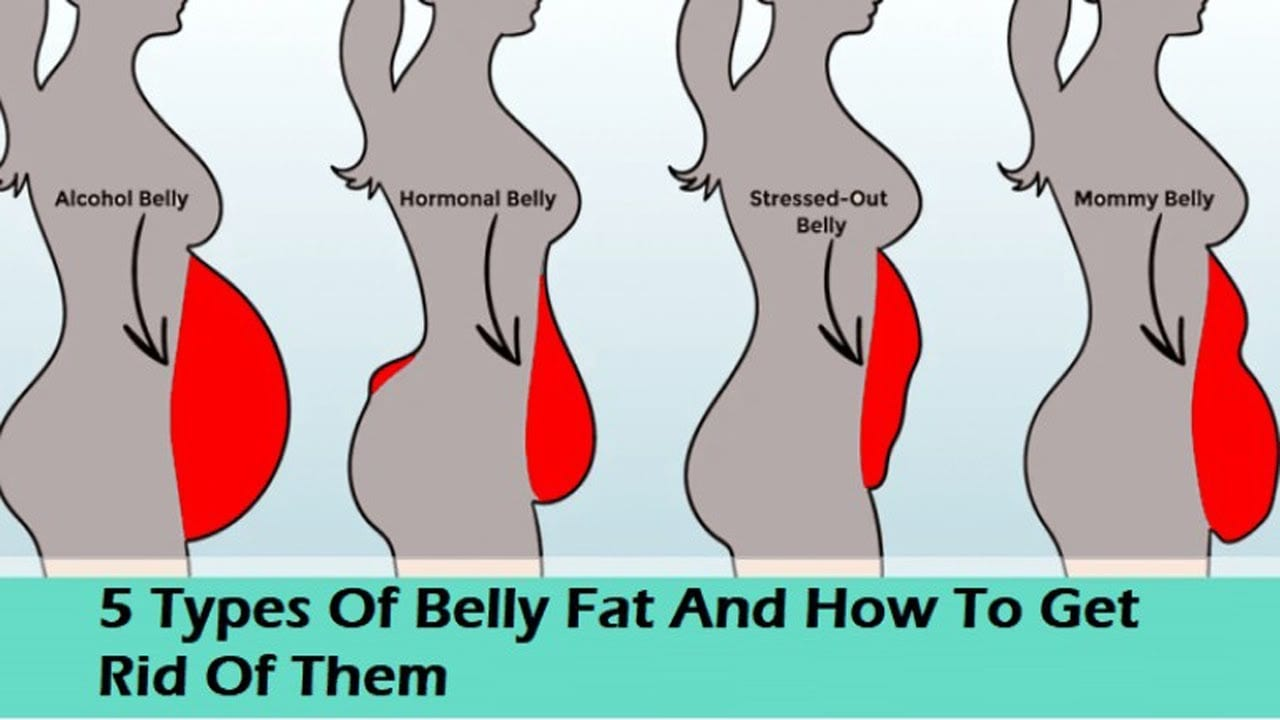 12 High Protein Foods To Lose Belly Fat That Are Supported By Science — Nutrition